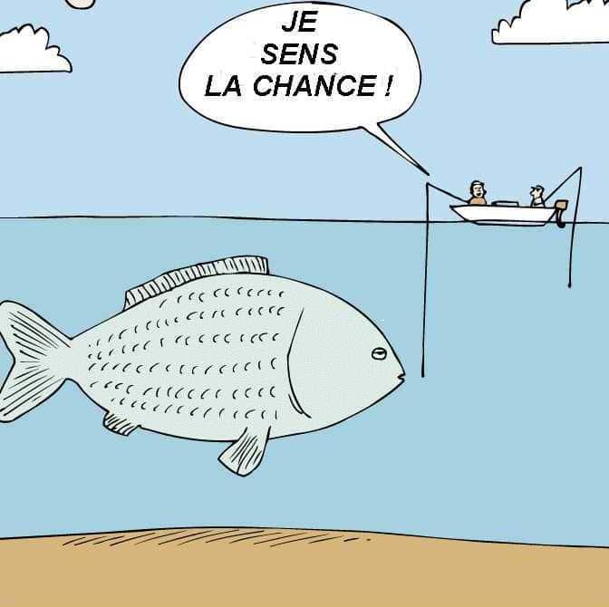 Partir à la pêche aux infos (auteur invité)