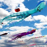 kites-779957_1280