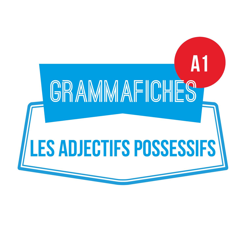 GRAMMAFICHE A1: les adjectifs possessifs
