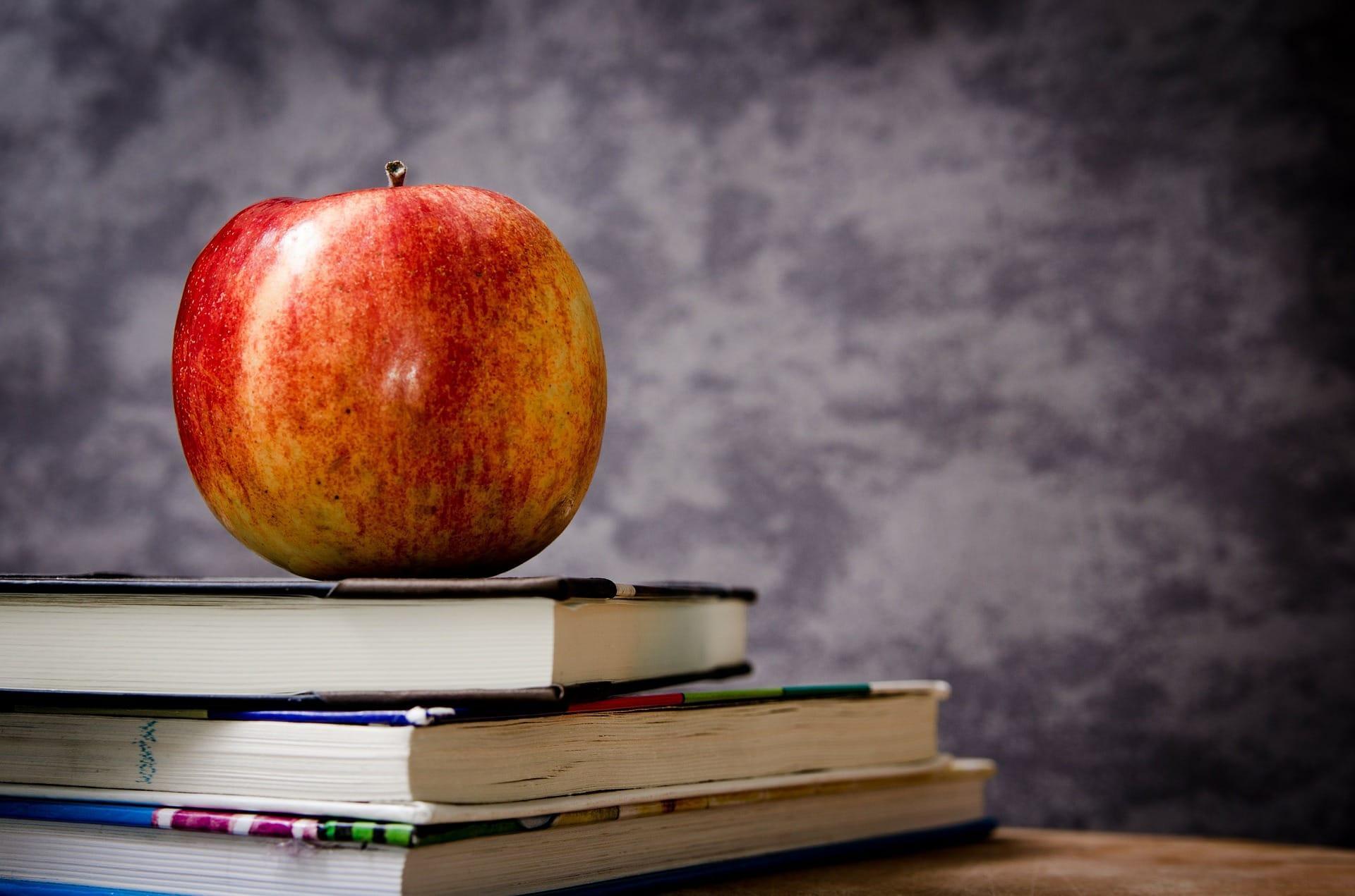 Dix conseils pour un prof débutant