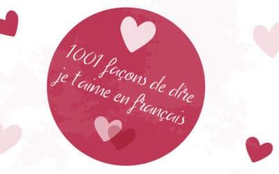 Mini poster : dire je t'aime en fançais