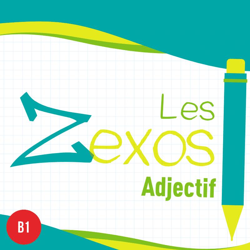 Les Zexos Adjectif B1 Les Zexperts Fle