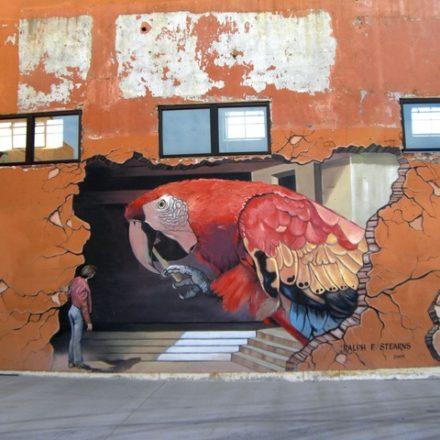 C'est quoi le street art ? (B1+)
