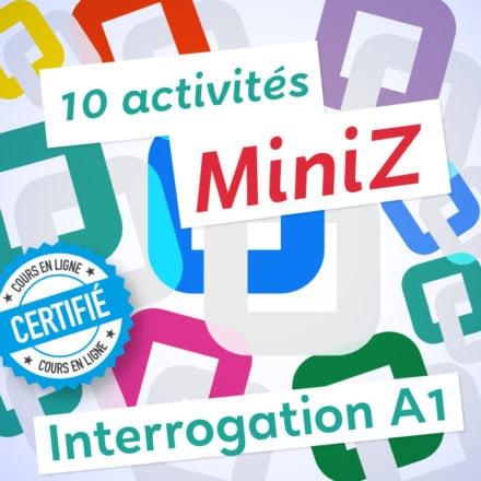 10 MiniZ Interrogation A1