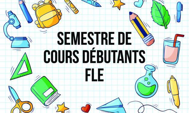 Cours de FLE débutants : Cours 2